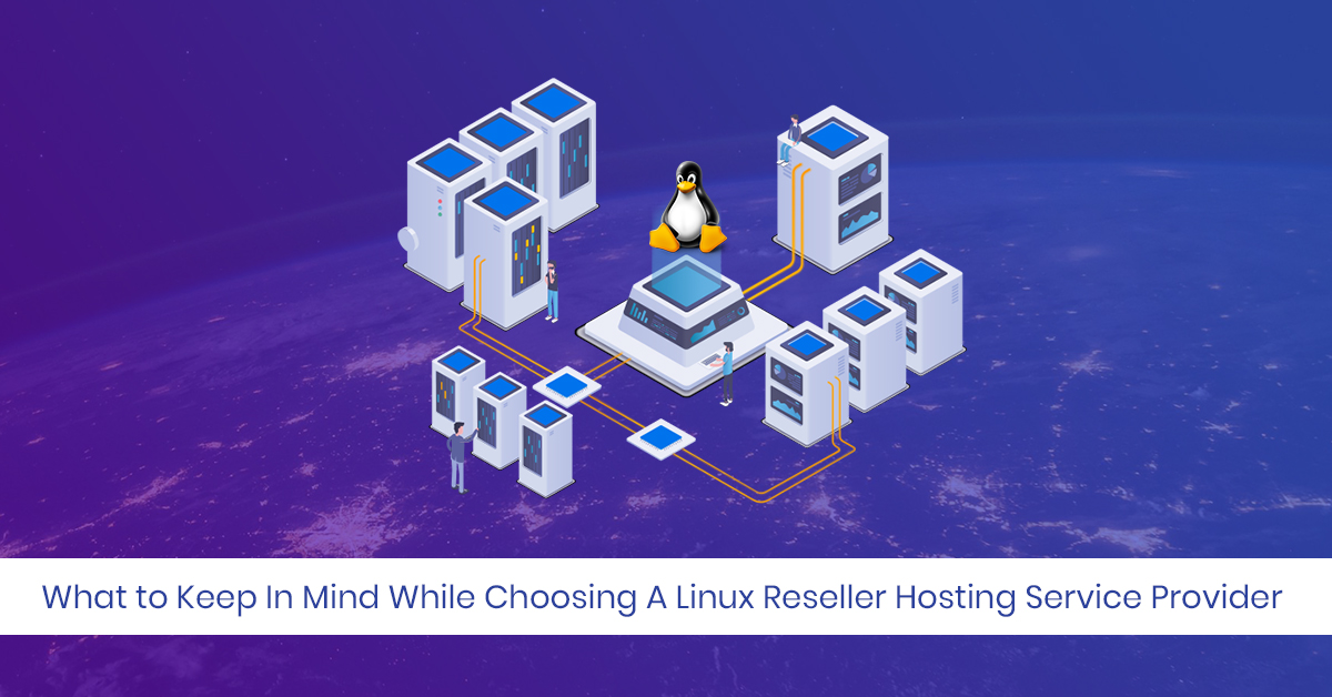 Shared Hosting Service